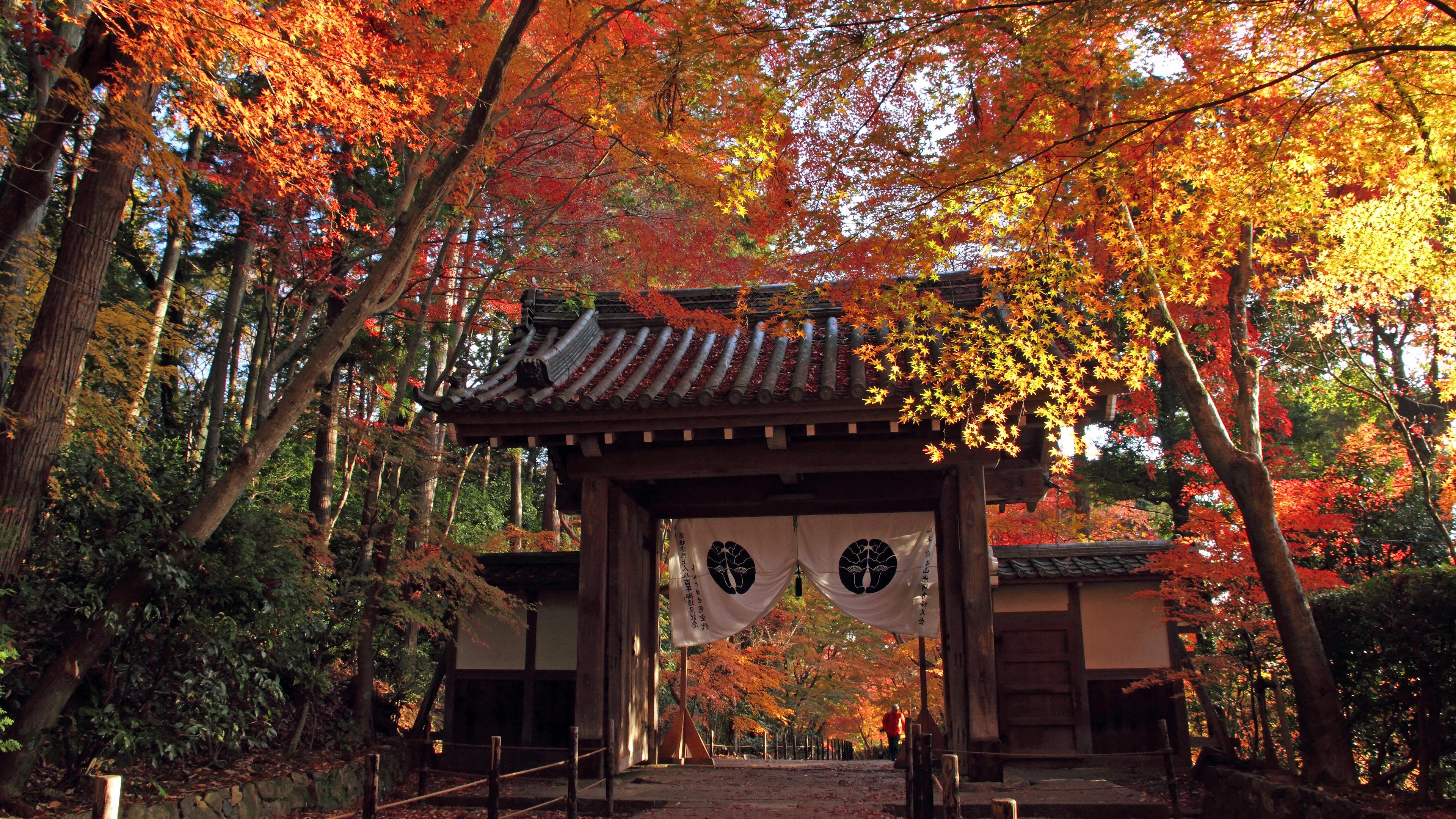 2011年に撮影した紅葉の京都の壁紙その2です。
