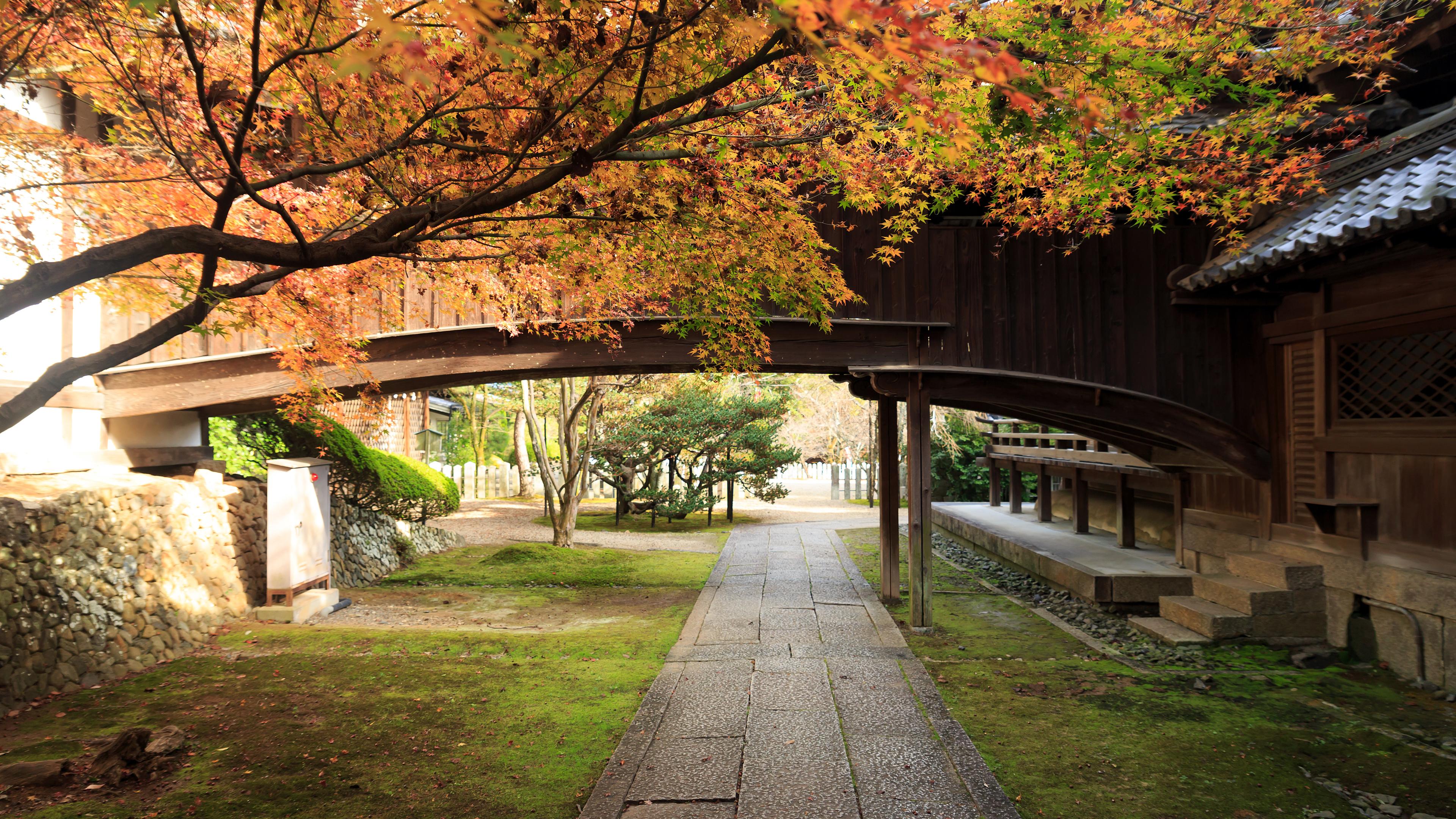 2016年紅葉の京都壁紙その14です。